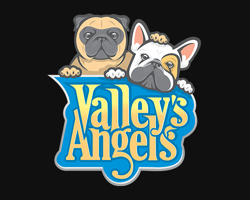 Canil Valley's Angels